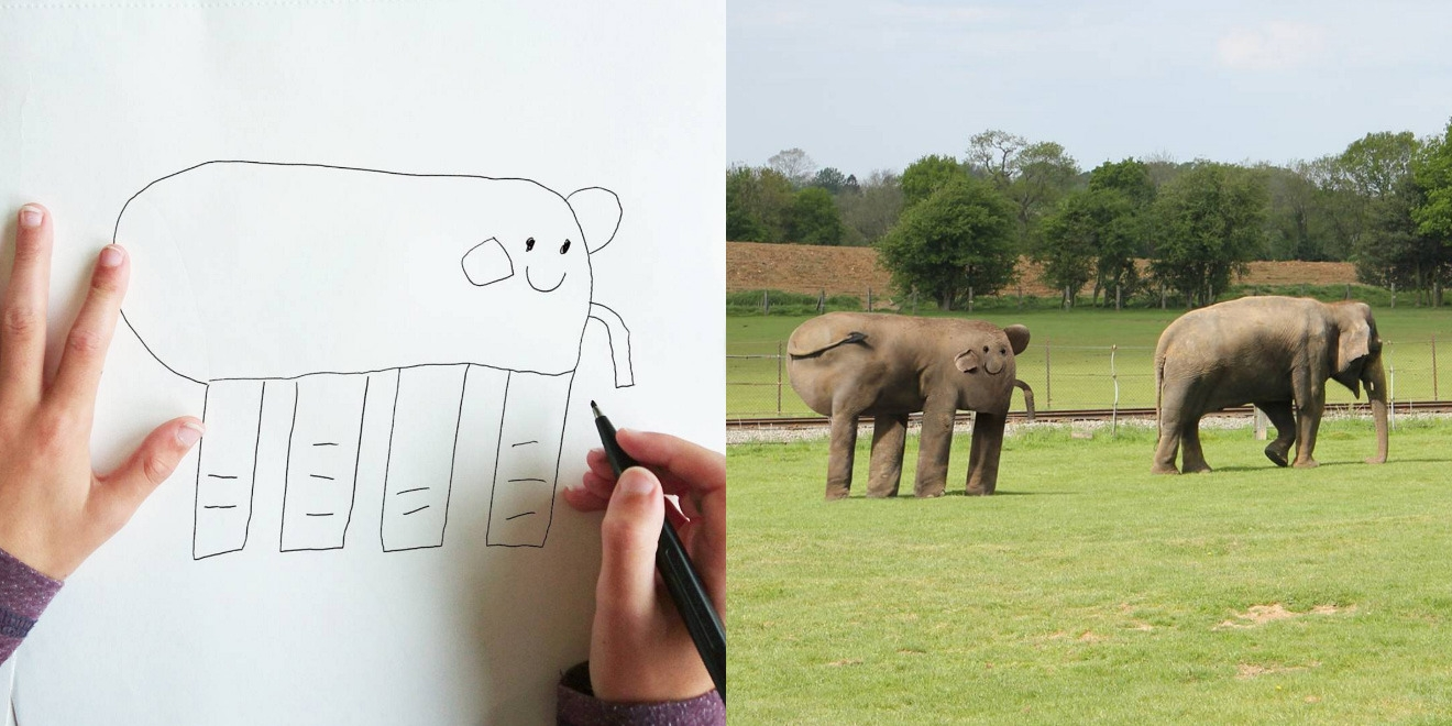 Elephant Drawing Both