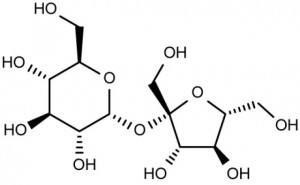 Chemical makeup of Sucrose