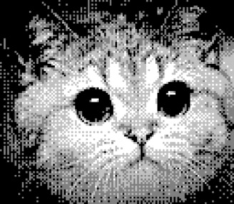 This was about as good as the quality could get for the 8bit GameBoy Camera..
